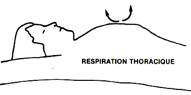 Respiration thoracique