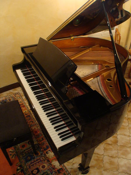 Piano crapaud